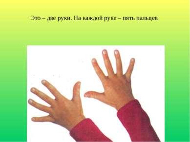Это – две руки. На каждой руке – пять пальцев