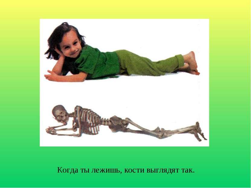 Когда ты лежишь, кости выглядят так.