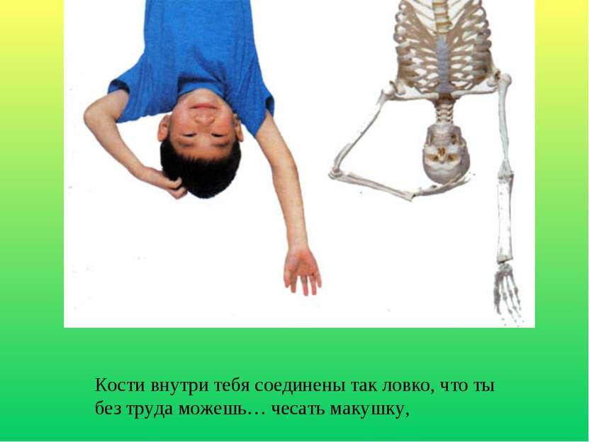 Кости внутри тебя соединены так ловко, что ты без труда можешь… чесать макушку,