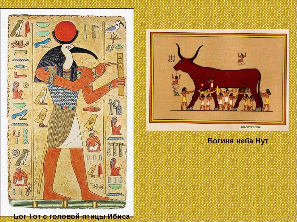 Бог Тот с головой птицы Ибиса Богиня неба Нут