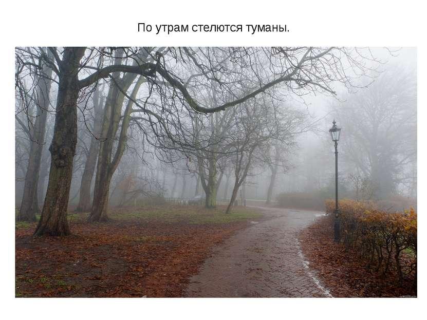 По утрам стелются туманы.