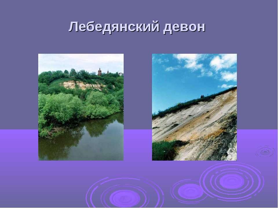 Лебедянский девон