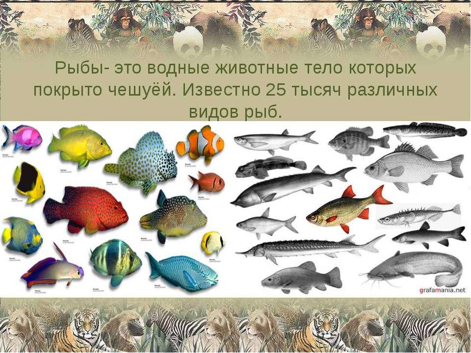 Рыбы- это водные животные тело которых покрыто чешуёй. Известно 25 тысяч разл...