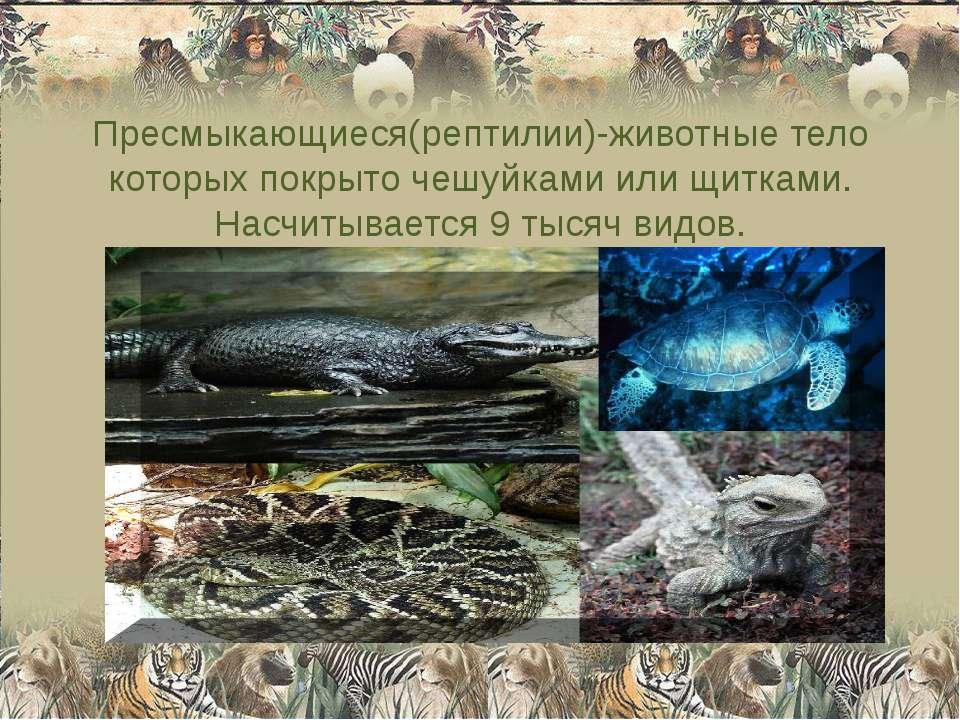 Пресмыкающиеся(рептилии)-животные тело которых покрыто чешуйками или щитками....