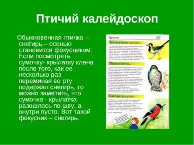 Птичий калейдоскоп Обыкновенная птичка – снегирь – осенью становится фокусник...