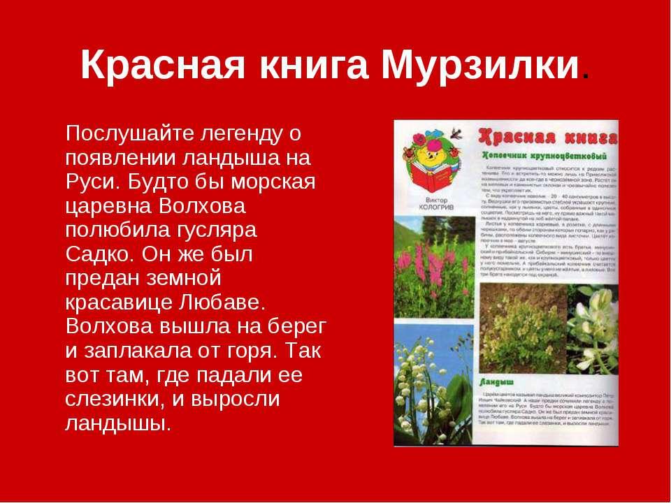Красная книга Мурзилки. Послушайте легенду о появлении ландыша на Руси. Будто...
