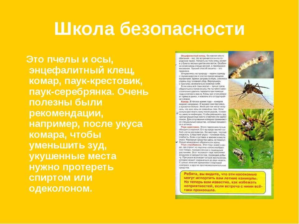Школа безопасности Это пчелы и осы, энцефалитный клещ, комар, паук-крестовик,...