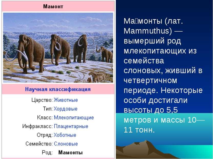Ма монты (лат. Mammuthus) — вымерший род млекопитающих из семейства слоновых,...