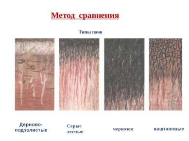Метод сравнения Типы почв Дерново- подзолистые Серые лесные чернозем каштановые