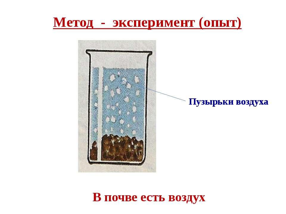В почве есть воздух Пузырьки воздуха Метод - эксперимент (опыт)