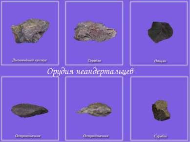 Орудия неандертальцев