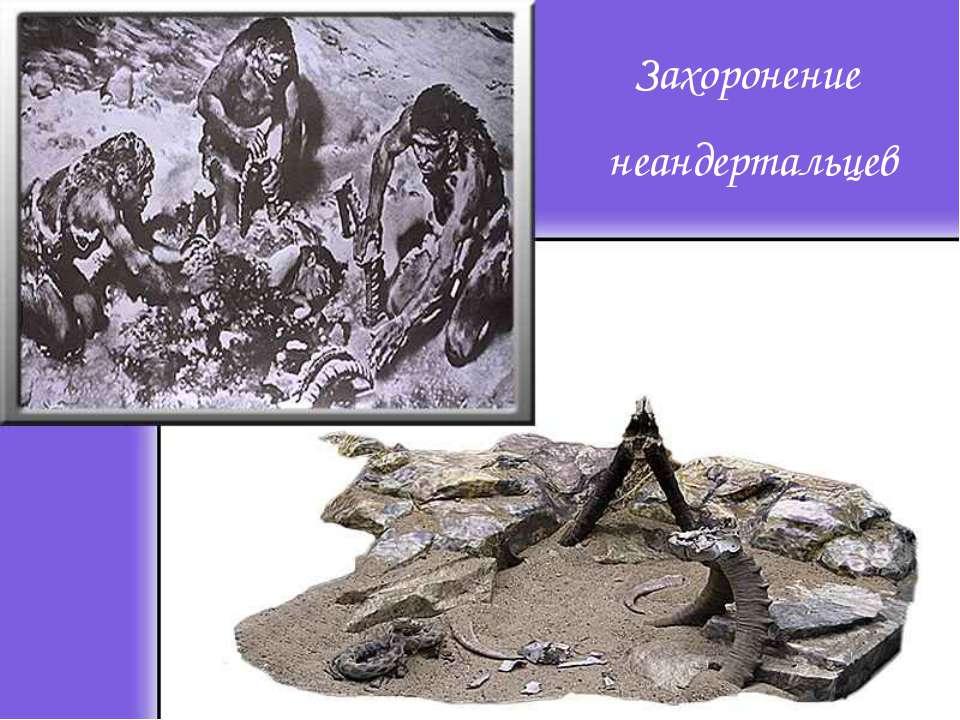 Захоронение неандертальцев