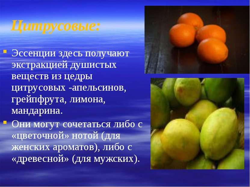 Цитрусовые: Эссенции здесь получают экстракцией душистых веществ из цедры цит...