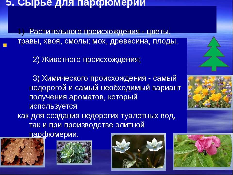 5. Сырье для парфюмерии Растительного происхождения - цветы, травы, хвоя, смо...