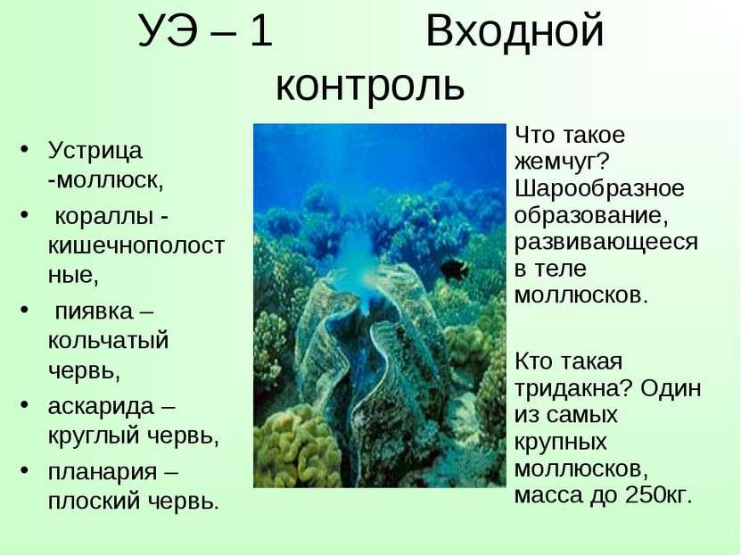 УЭ – 1 Входной контроль Устрица -моллюск, кораллы - кишечнополостные, пиявка ...