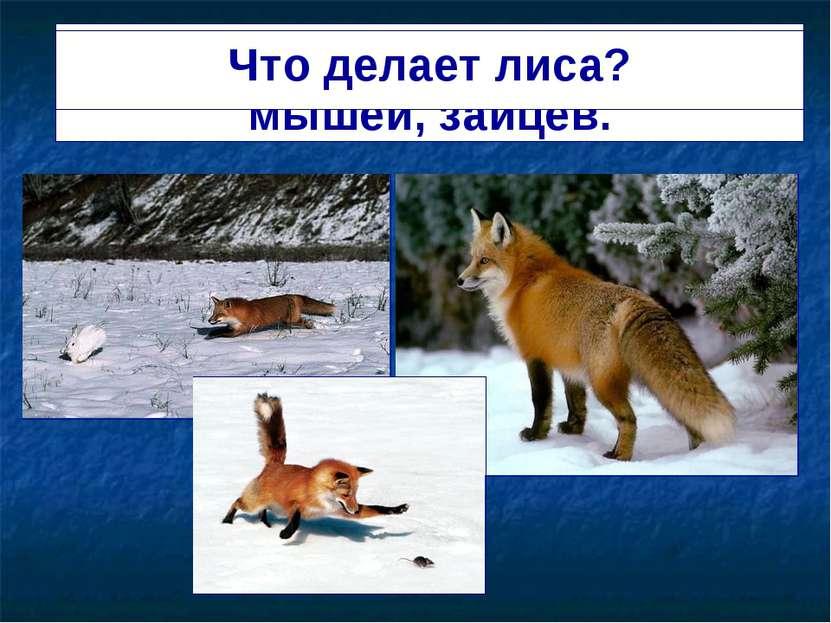 Лиса ходит по лесу, ищет мышей, зайцев. Что делает лиса?
