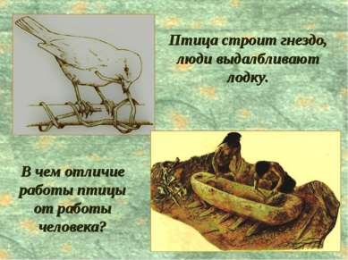 В чем отличие работы птицы от работы человека? Птица строит гнездо, люди выда...