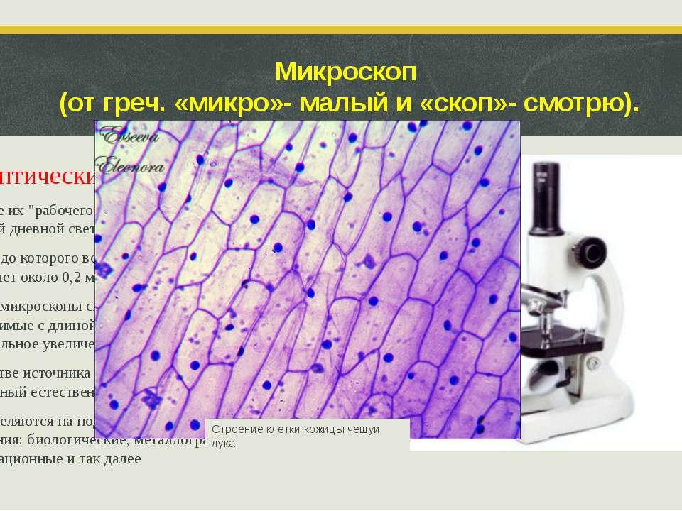 Микроскоп (от греч. «микро»- малый и «скоп»- смотрю). Оптические микроскопы В...