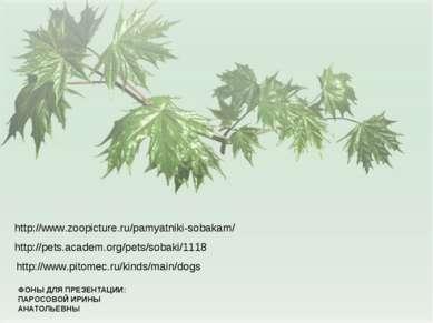 ФОНЫ ДЛЯ ПРЕЗЕНТАЦИИ: ПАРОСОВОЙ ИРИНЫ АНАТОЛЬЕВНЫ http://www.pitomec.ru/kinds...