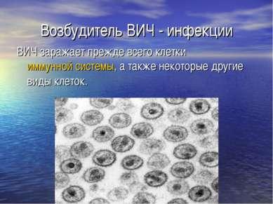 Возбудитель ВИЧ - инфекции ВИЧ заражает прежде всего клетки иммунной системы,...