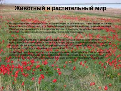 Животный и растительный мир На территории республики обитают около 60 видовм...