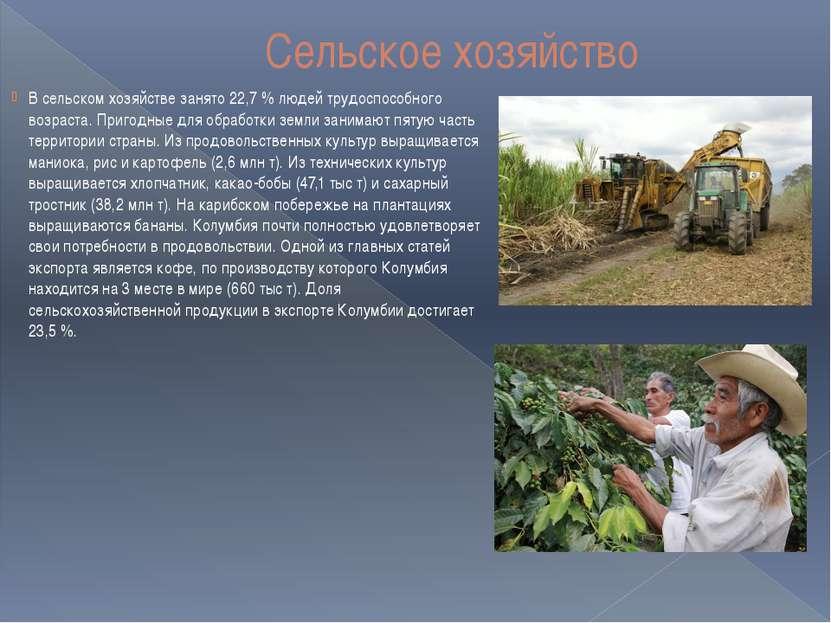 Сельское хозяйство В сельском хозяйстве занято 22,7 % людей трудоспособного в...