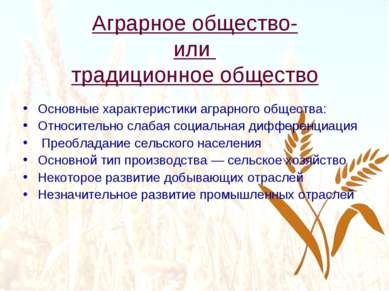 Аграрное общество- или традиционное общество Основные характеристики аграрног...