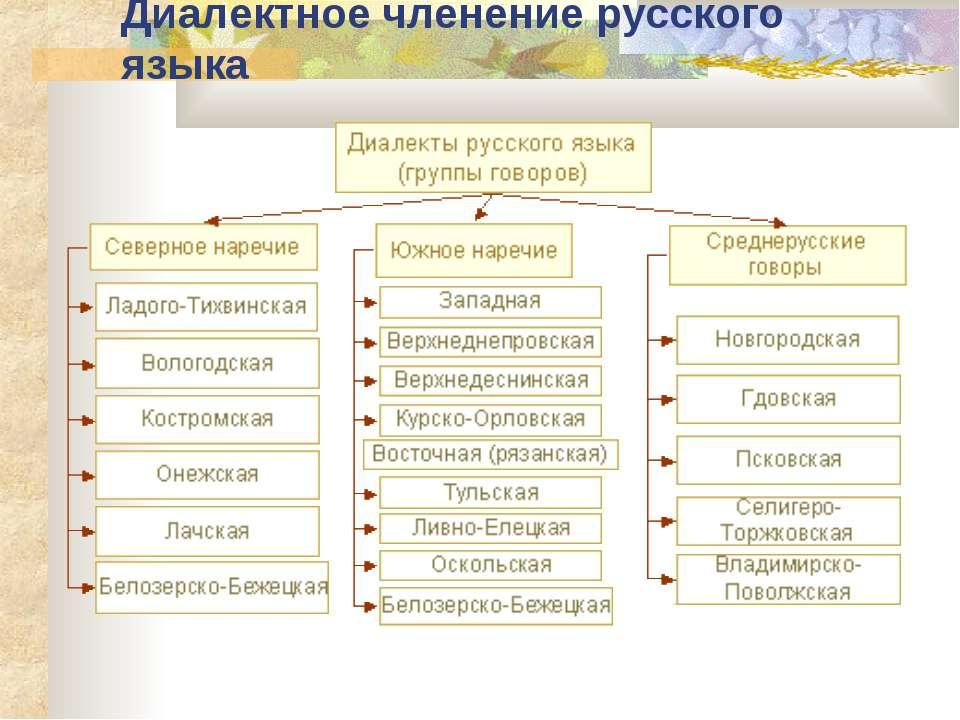 Диалектное членение русского языка