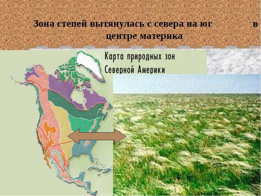 Зона степей вытянулась с севера на юг в центре материка