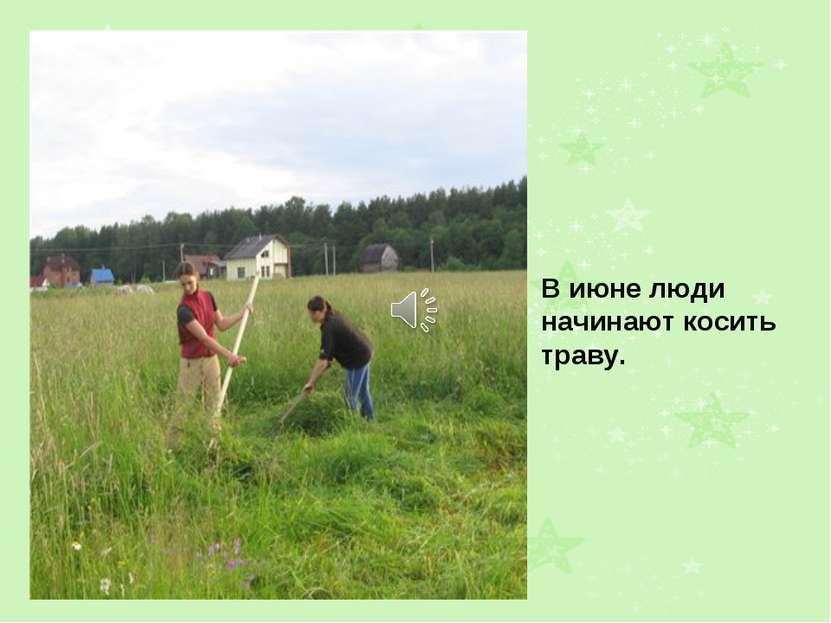 В июне люди начинают косить траву.