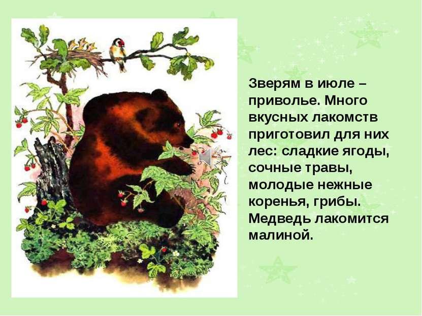Зверям в июле – приволье. Много вкусных лакомств приготовил для них лес: слад...