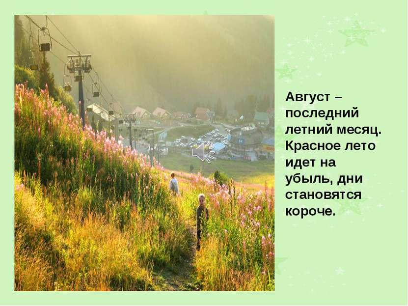 Август – последний летний месяц. Красное лето идет на убыль, дни становятся к...