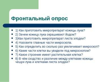 Фронтальный опрос 1) Как приготовить микропрепарат кожицы лука? 2) Зачем кожи...