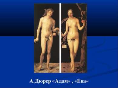 А.Дюрер «Адам» , «Ева»