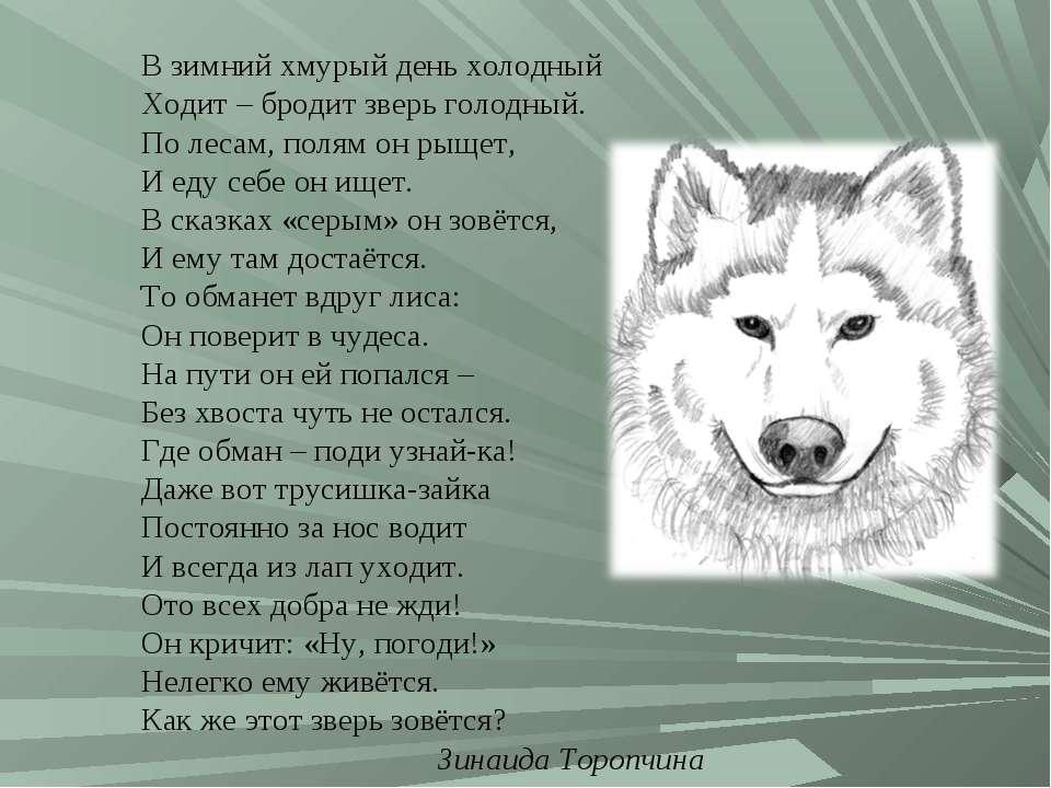 В зимний хмурый день холодный Ходит – бродит зверь голодный. По лесам, полям ...