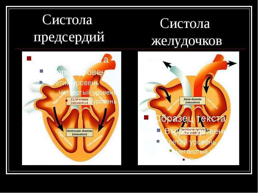 Систола предсердий Систола желудочков