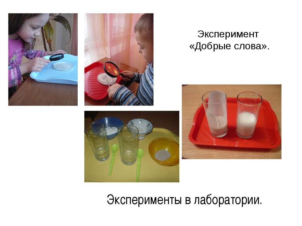 Эксперимент «Добрые слова». Эксперименты в лаборатории.