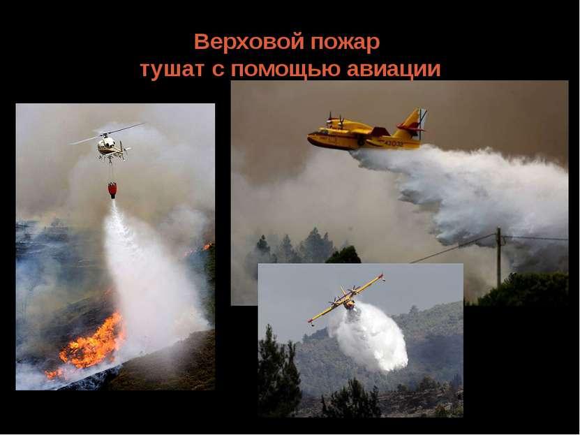 Верховой пожар тушат с помощью авиации