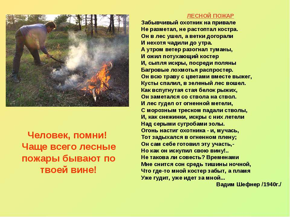 Человек, помни! Чаще всего лесные пожары бывают по твоей вине! ЛЕСНОЙ ПОЖАР З...