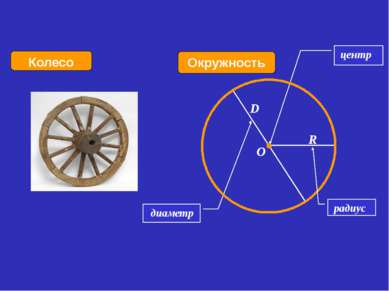 диаметр Окружность Колесо центр R D O радиус