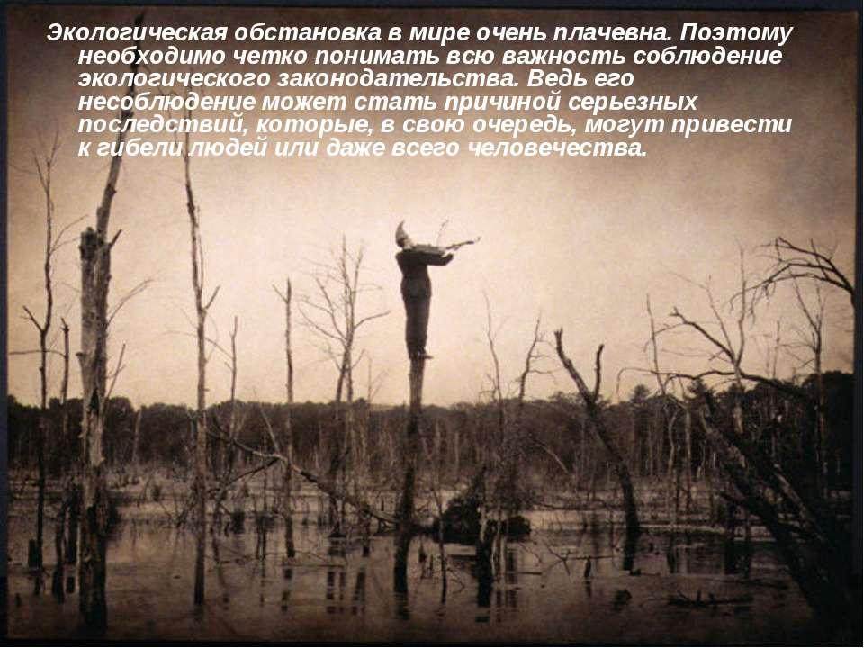 Экологическая обстановка в мире очень плачевна. Поэтому необходимо четко пони...