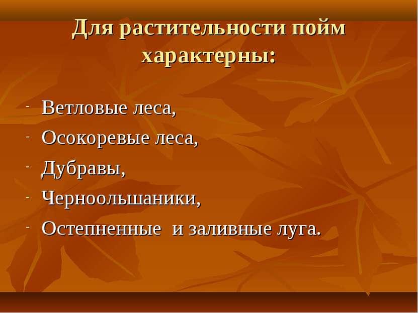 Для растительности пойм характерны: Ветловые леса, Осокоревые леса, Дубравы, ...