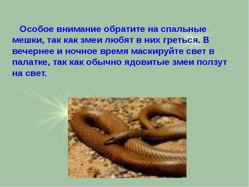 Особое внимание обратите на спальные мешки, так как змеи любят в них греться....