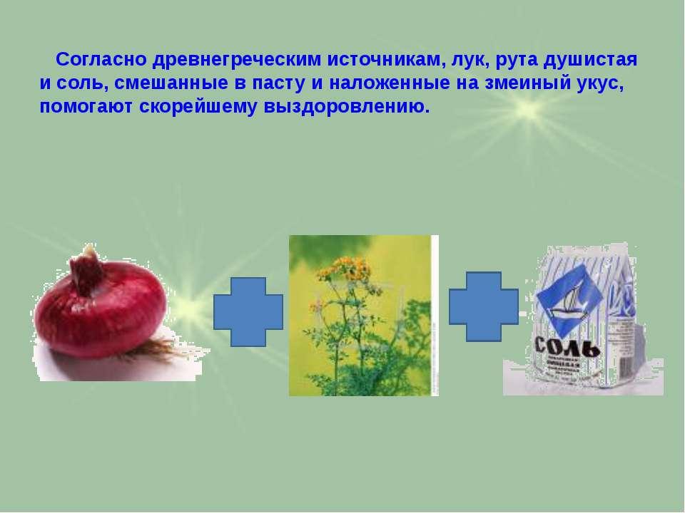 Согласно древнегреческим источникам, лук, рута душистая и соль, смешанные в п...