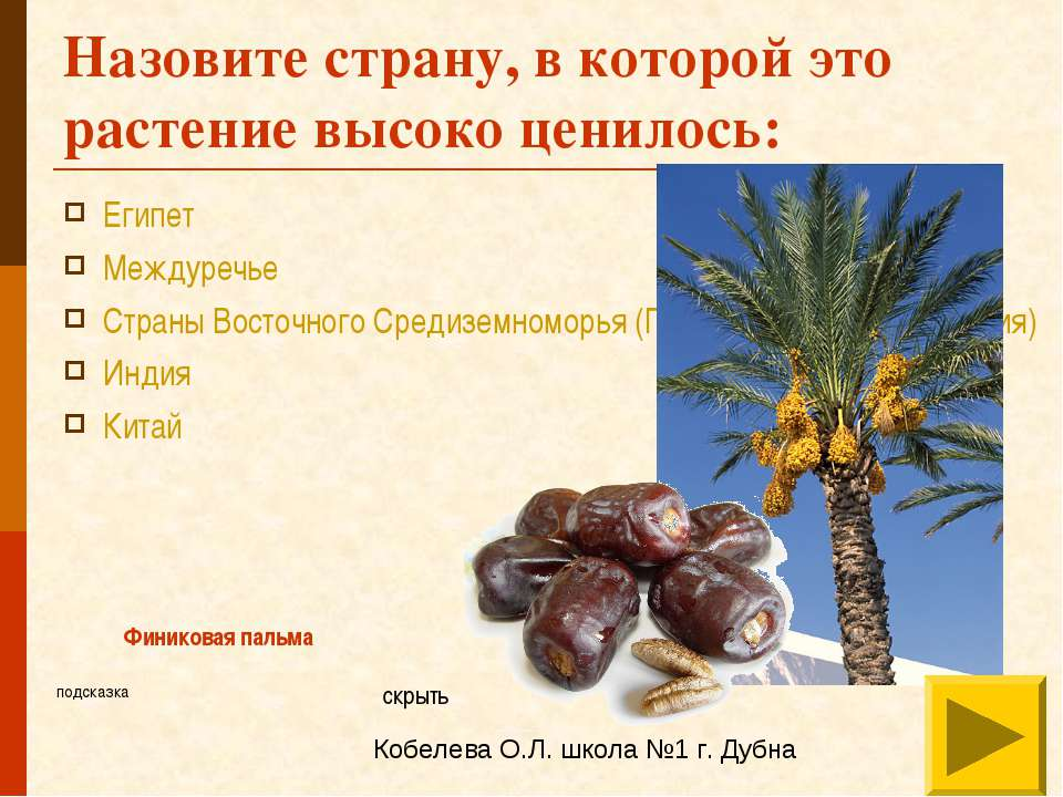 Назовите страну, в которой это растение высоко ценилось: Египет Междуречье Ст...