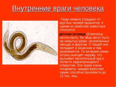 Внутренние враги человека Люди немало страдают от круглых червей-паразитов. К...
