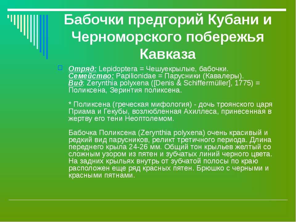 Бабочки предгорий Кубани и Черноморского побережья Кавказа Отряд: Lepidoptera...