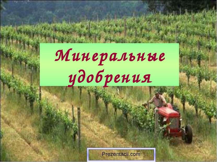 Минеральные удобрения Prezentacii.com
