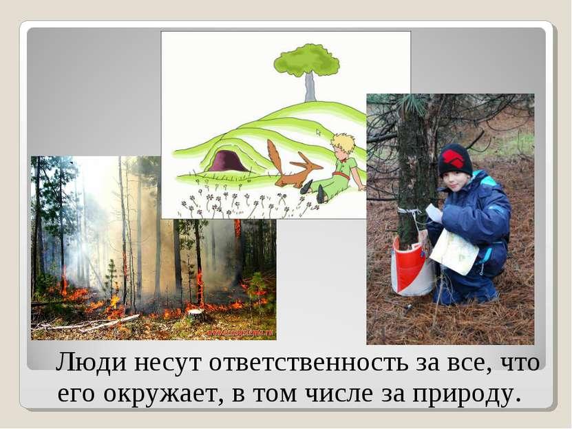Люди несут ответственность за все, что его окружает, в том числе за природу.
