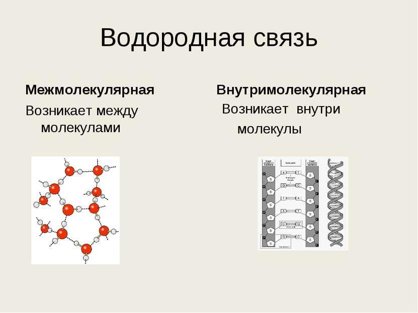 Водородная связь Межмолекулярная Возникает между молекулами Внутримолекулярна...